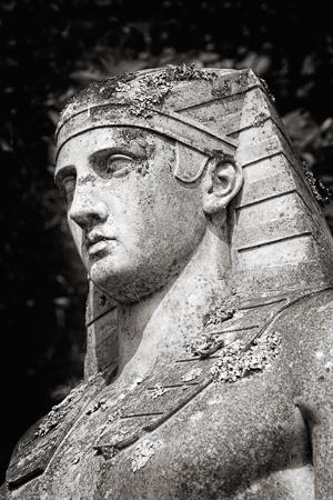 the-egyptian-30451